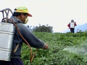 pesticide-thumb-300x225-78